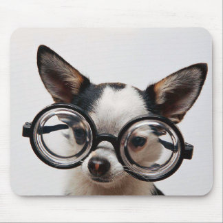 Chihuahua glasses - dog eyeglasses mouse pad