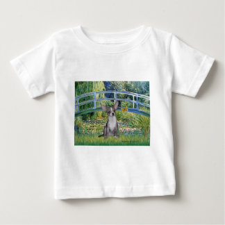 Chihuahua (grey5) - Bridge Shirts