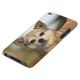 Chihuahua Headshot iPod Case-Mate Cases