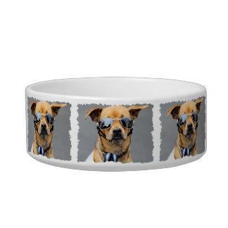 Chihuahua - Hello Ladies! Bowl