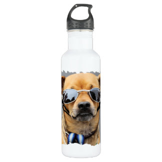 Chihuahua - Hello Ladies! Water Bottle