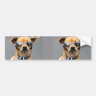 ¡Chihuahua - hola señoras! Pegatina Para Auto