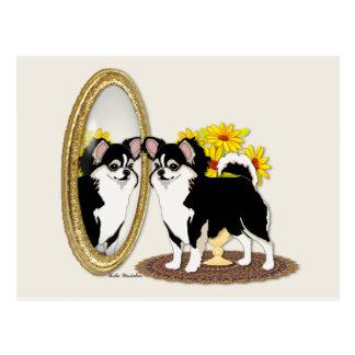 Chihuahua In A Mirror Postcard