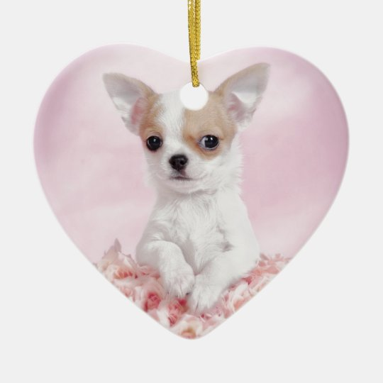 Chihuahua in pink with roses ceramic ornament
