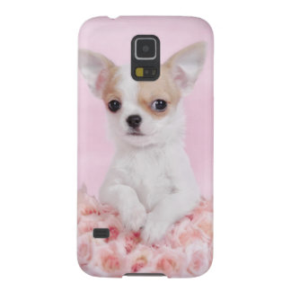 Chihuahua in pink with roses galaxy s5 cover