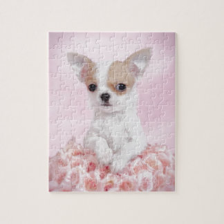 Chihuahua in pink with roses puzzles