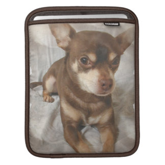 Chihuahua iPad Sleeve