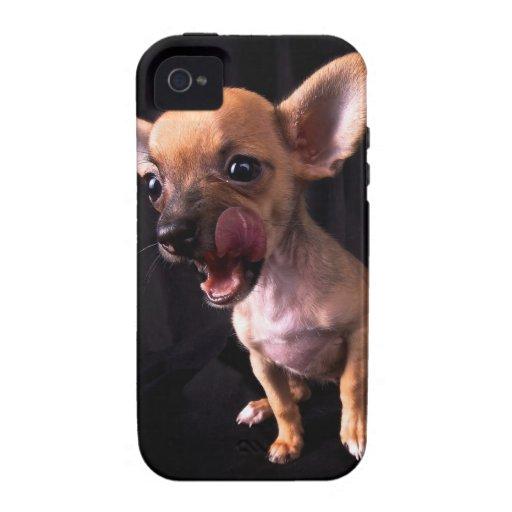 Chihuahua iPhone 4/4S Carcasa