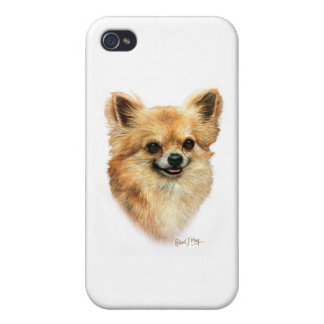 Chihuahua iPhone 4/4S Cases