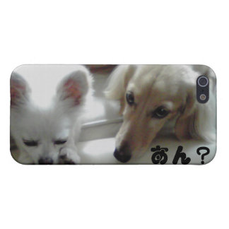 Chihuahua is the cutest dog. iPhone 5 covers