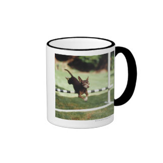 Chihuahua Jumping Hurdle Ringer Mug