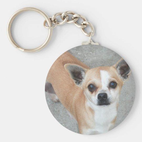 Chihuahua Keychain Zazzlecom