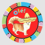 Chihuahua larga de la capa de la fiesta pegatina redonda