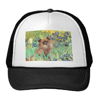Chihuahua LgHair 1 - Irises Trucker Hats