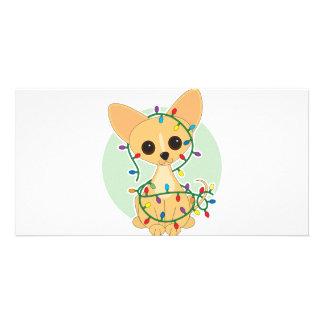 Chihuahua Lights Card