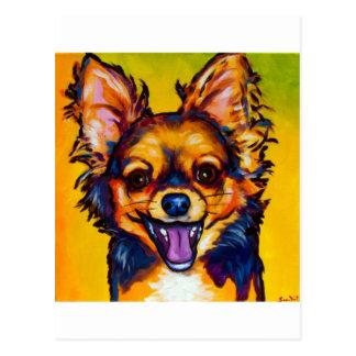 Chihuahua (long coat sable) postcard
