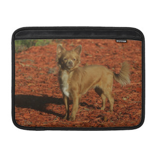 Chihuahua Looking at Camera Sleeve For MacBook Air