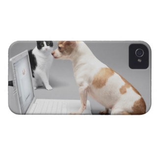 Chihuahua looking into the screen of a laptop iPhone 4 Case-Mate case