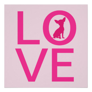 Chihuahua love pink dog cute poster, gift idea poster