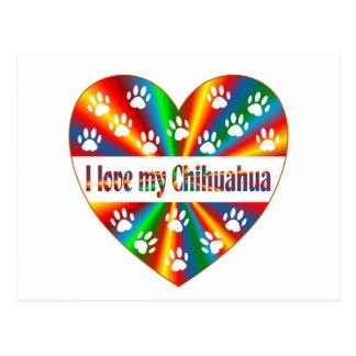 Chihuahua Love Postcard