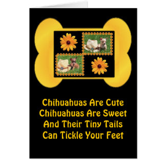 Chihuahua Lover Delight Greeting Card