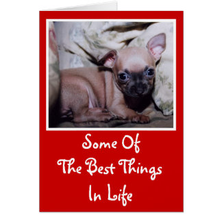 Chihuahua Lover's Delight Card