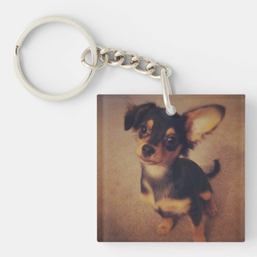Chihuahua Magnet Single-Sided Square Acrylic Keychain