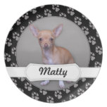 Chihuahua - Matty Platos De Comidas