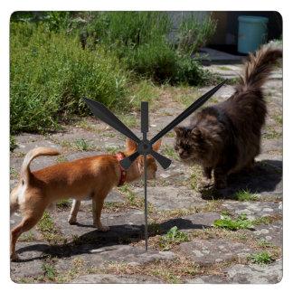 Chihuahua Meets Cat Square Wall Clock