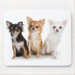 Chihuahua Mousepad Alfombrilla De Ratón