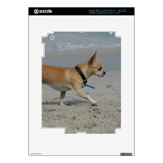 Chihuahua on Beach Decal For iPad 3