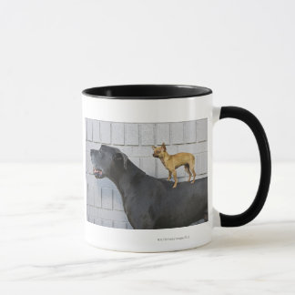 Chihuahua on Great Dane's back Mug