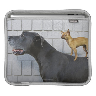Chihuahua on Great Dane's back Sleeve For iPads