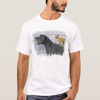 Chihuahua on Great Dane's back T-Shirt