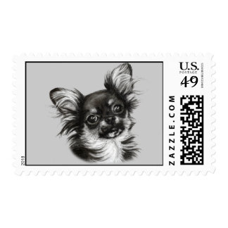 Chihuahua Painting Stamps