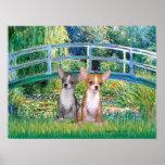Chihuahua Pair - Lily Pond Bridge Print