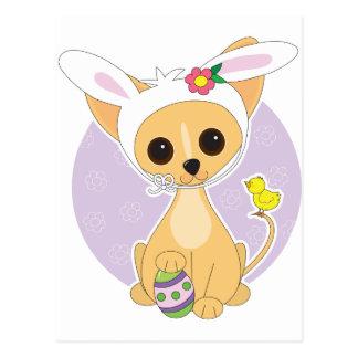 Chihuahua Pascua Postal