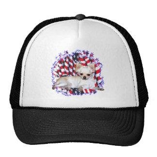 Chihuahua Patriot Hats