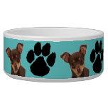 Chihuahua Pet Water Bowls