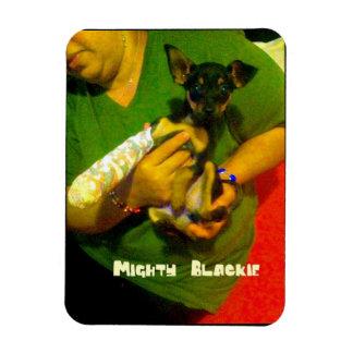 Chihuahua Photo Magnet