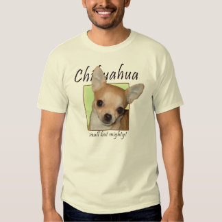 Chihuahua Playeras