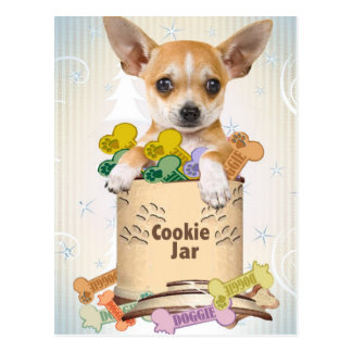Chihuahua Posed with Cookie Jar Postcard