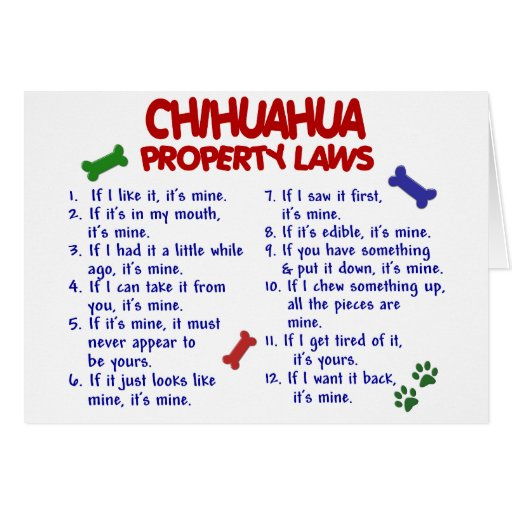 CHIHUAHUA Property Laws 2 Card