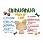 Chihuahua Property Laws 4 Postcard
