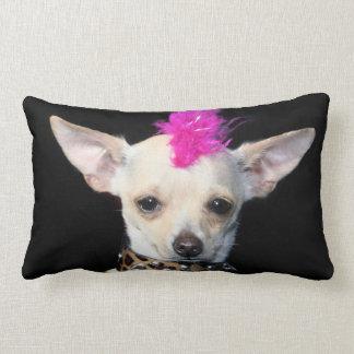 Chihuahua punk dog American Mojo lumbar  pillow