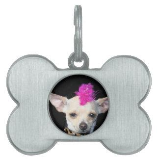 Chihuahua Punk dog Pet Name Tag