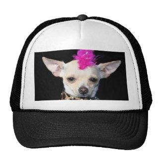 Chihuahua Punk Mesh Hat