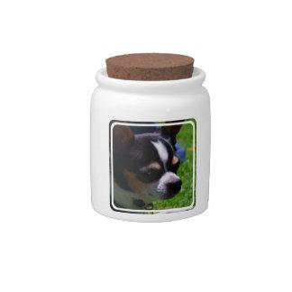 Chihuahua Pup Candy Jar