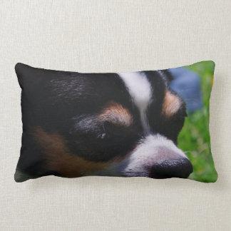 Chihuahua Pup Pillow