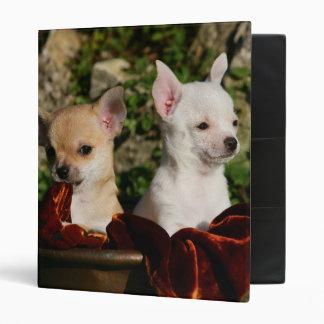 Chihuahua Puppies Binder